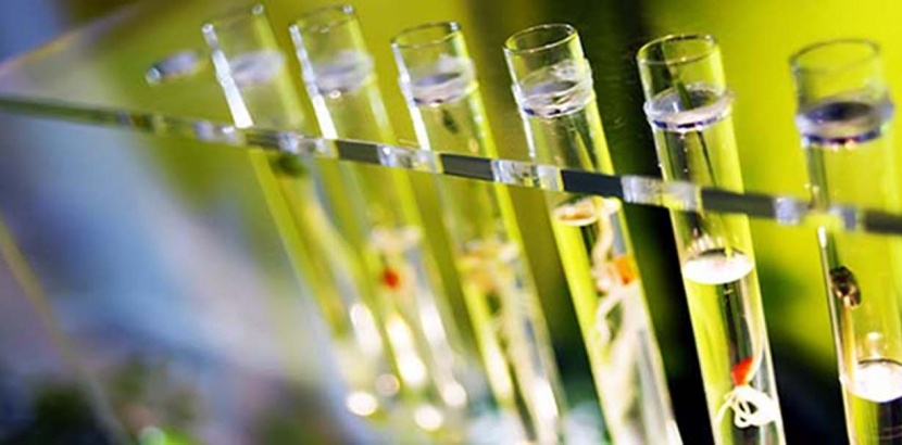 Department of Chemistry Changes: Questions Answered